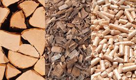 biomasse_1473405700